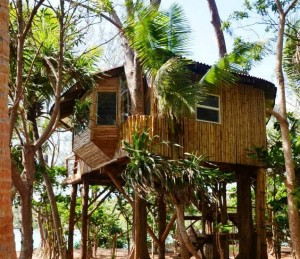 Mandala Resort Luxury Treehouse