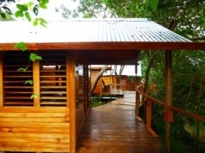 'ovava tree lodge3